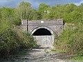 Disused Railway Tunnel - geograph.org.uk - 2319.jpg
