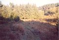 Dolina, Verica2.jpg