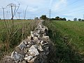 Dry stone wall and bridleway to Tiltups End - geograph.org.uk - 269668.jpg