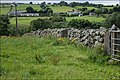 Drystone wall near Castlewellan - geograph.org.uk - 527473.jpg