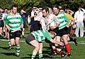 Dunbar RFC in action.jpg
