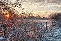 Dunswell IMG 7188 - panoramio.jpg