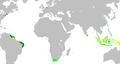 Dutch Empire35.PNG