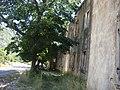 E80, Risan, Montenegro - panoramio - ines lukic (1).jpg
