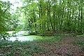 Eikenrode park vijver met eiland.jpg
