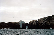 A rocky peninsula, whose surface is covered in white birds sits in a grey sea. The rock is heavily eroded in places and there are two large gaps in the rock with a third making an oblong window right through the structure. More birds wheel around in the air and the summit of a precipitous island lies beyond under grey skies.