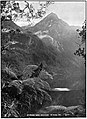 Emerald Hours in New Zealand (1906) · Lowth · 203.jpg