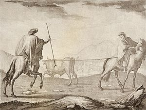Economic history of Argentina - Lassoing cattle in the pampas, 1794 lithography by Fernando Brambilla.