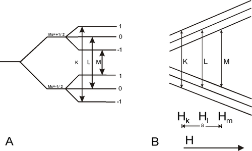 Реферат: применение эпр-спектрометрии в фармацевтической химии