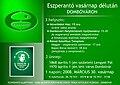 Esperanto poster 2008 03.jpg