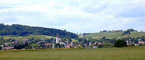 View of Erzingen