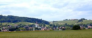 Klettgau - View of Erzingen