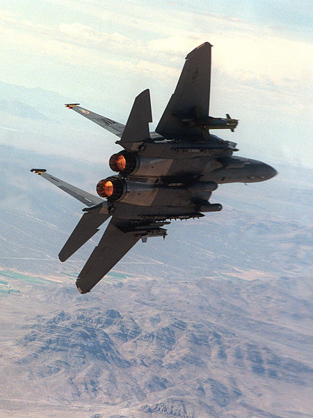 ������ ������ ������� �������� ����� 450px-F-15E_aft_in_flight.jpg