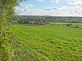 Farmland north of Wootton - geograph.org.uk - 2196851.jpg