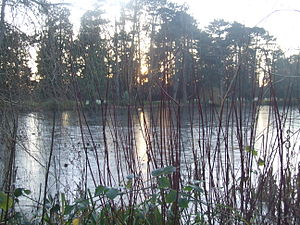 Farmleigh - Sunset at the boat lake in December 2014