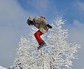 Feldberg - Jumping Snowboarder2.jpg