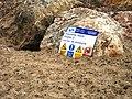 Felixstowe South Groyne 3 - geograph.org.uk - 1097184.jpg