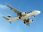 Finnair Airbus A319-112 OH-LVI snowfall.jpg