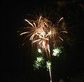 Fireworks of Tamagawa 2009 4.jpg