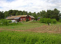 Flickr - Per Ola Wiberg ~ mostly away - Rosenhills farm.jpg