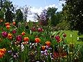 Flores en Versalles - panoramio.jpg