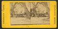 Florida residence of Prof. & Mrs. H.B. Stowe, from Robert N. Dennis collection of stereoscopic views.png