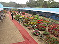 Flower Show 2012 - Indian Botanic Garden - Howrah 2012-01-29 1764.JPG