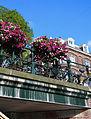 Flowers and Bikes in Amsterdam (14653663648).jpg