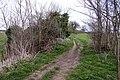Footpath between Appleford and Long Wittenham - geograph.org.uk - 1232363.jpg