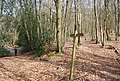 Footpath waymarker, Kemp's Wood (2) - geograph.org.uk - 1252044.jpg