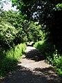 Former Crowhurst to Bexhill Railway - geograph.org.uk - 1358796.jpg