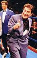 Fred Levin at Roy Jones Fight.jpg
