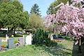 Friedhof Wixhausen Grabreihen.JPG