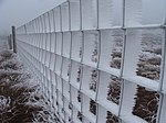 Frozen Fence. Heading towards Lovely Seat.