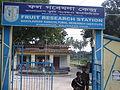 Fruit research station Rajshahi.JPG