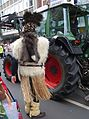 Fur costumes in Rosenmontag Parade, Düsseldorf 2017 (06).jpg