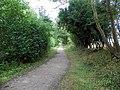 GOC Wheathampstead 163 Ayot Greenway (19551014868).jpg