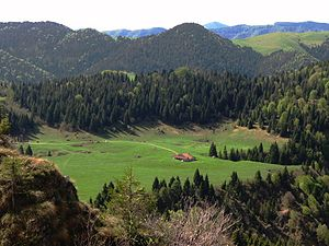 Gandino - The Field of Avene, where finds of the Upper Paleolithic were found