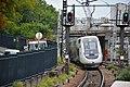 Gare de Maisons-Alfort - Alfortville DSC 1046 (49643902063).jpg