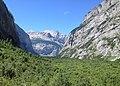 Gasterntal Wald.JPG