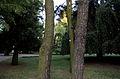 Gdańsk, park opacki, XIII, XVIII, XIX 4.jpg