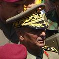 GeneralMohamedSalahHamdi July2013.jpg