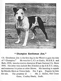 Gentleman Jim sbt.jpg