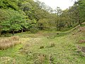 Glaze Brook valley - geograph.org.uk - 171395.jpg