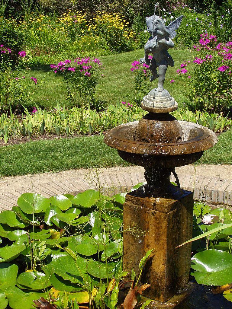 bassin design jardin