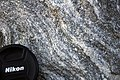 Gneiss (Precambrian; Harriman Reservoir roadcut, Route 9, southern Vermont, USA) 12.jpg
