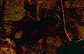 Goliath Birdeater Tarantula (Theraphosa leblondi) (10649522755).jpg
