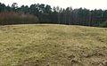Gora Gliniasta (Puszcza Notecka) (4).JPG