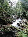 Gorges de Vintgar, Eslovènia (agost 2013) - panoramio.jpg