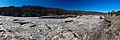 Great Falls Panorama during high river.jpg